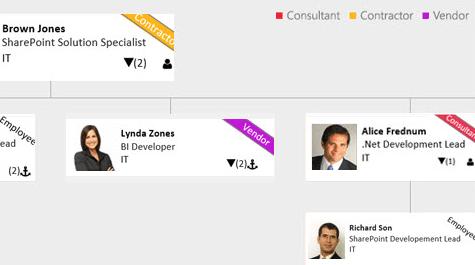 Saketa SharePoint Organization Chart Employee Type Classification
